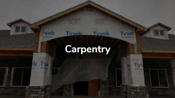 Carpentry businesses in Michigan